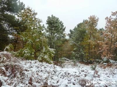 Valle de Iruelas - Pozo de nieve - Cerro de la Encinilla;senderos cadiz pantalones senderismo